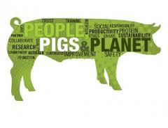 People pig planet 1
